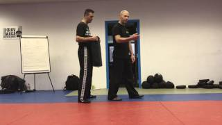 Regular Back Kick with Amnon Darsa at Institute Krav Maga Netherlands