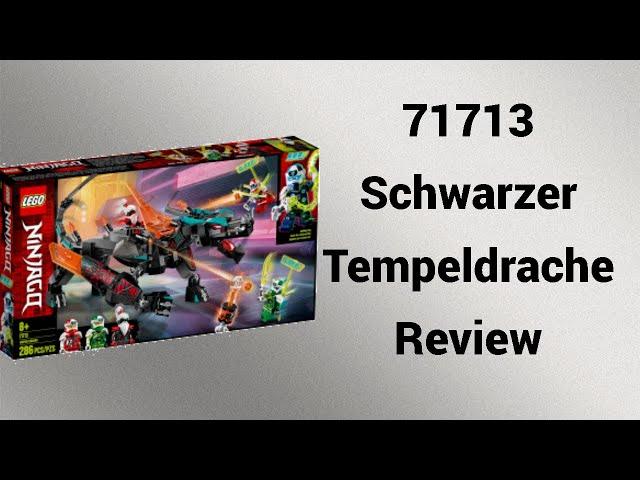 71713 Schwarzer Tempeldrache Review   Steinfreund2014