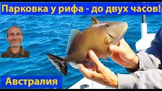 Рыбалка у рифа посреди океана. (видео 067)