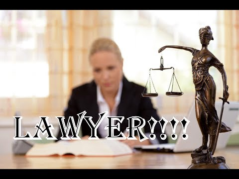 What's it Really Take to be a Lawyer? by cat vs bat
