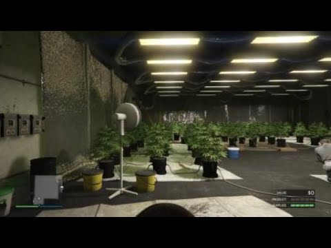 What heppend when you bye a weed farm