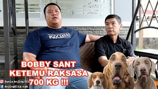 Bobby Sant Ketemu Raksasa 700 Kg Di Penitipan Anjing Terbesar Di Indonesia
