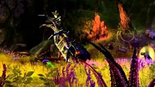 Elder Scrolls Online: регистрация на бета-тест открыта!