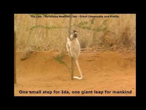The Link - Darwinius masillae - One small step for Ida - (25 of 30)
