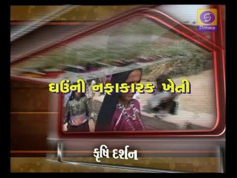 Krishi Darshan - Ghauni Nafakarak Kheti