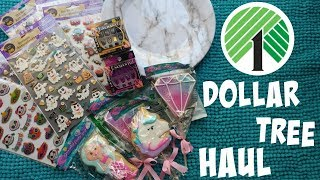 new finds at dollar tree