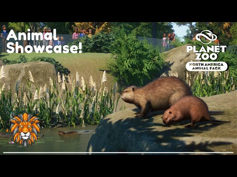 Planet Zoo North America DLC Animal Showcase!  