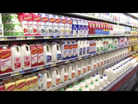 Researchers See Added Nutritional Benefits in Organic Milk