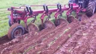case ih 735 plow at vanoostrum s for sale