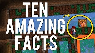 Terraria   10 Things You Didn't Know About Paintings