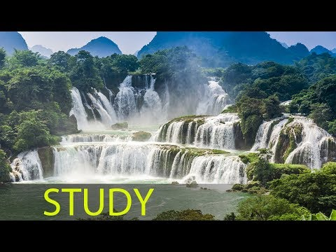 3 Hour Focus Music: Study Music, Alpha Waves, Calming Music, Concentration Music, Relaxation ☯1722