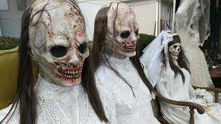 Corpse Bride Halloween Display Draws A Crowd
