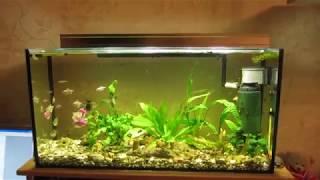 видео Как сделать освещение аквариума своими руками