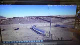 Cattle Yard/calving Pens Hd Ip Cam Preview