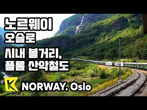 【K】Norway Travel-Oslo[노르웨이 여행-오슬로]시내 투어, 플롬 산악철도/Oslo Royal Palace/Viking Ship/Flam/Kjosfossen Falls