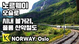 노르웨이 여행-오슬로 [Norway Travel-Oslo] 시내 투어, 플롬 산악철도/Oslo Royal Palace/Viking Ship/Flam/Kjosfossen Falls