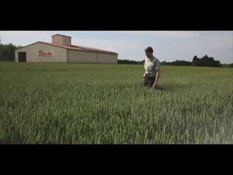 Unser Weizen - Qualität und Regionalität