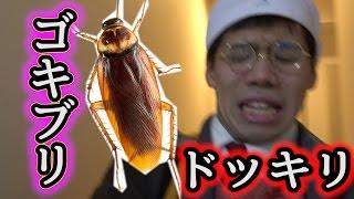 フィッシャーズ全員にゴキブリ投げつけドッキリ仕掛けたら絶叫と奇跡が起こったwww thumbnail