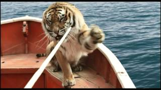 Life of Pi - Schiffbruch mit Tiger - Film Clip: Training Richard Parker (Deutsch/German)