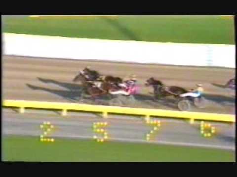 1984 Monticello Raceway  David Glasser Happy Honnika