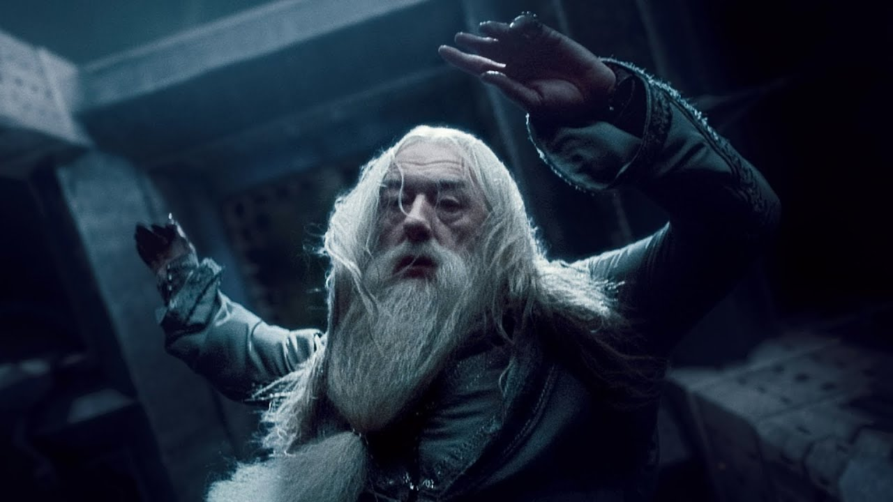 Image result for harry potter and dumbledore
