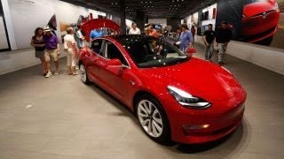 Elon Musk's brother upbeat on Tesla's future