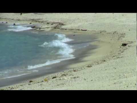 Meeresrauschen Entspannung