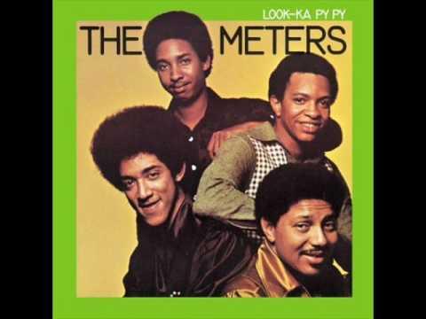 the meters pungee