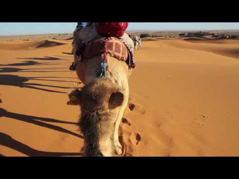 Intrepid Travel: Best of Morocco tour 2016