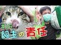 『飼主的責任』收養貓咪,就要愛他一輩子-MiMi醬 Cat Story#15