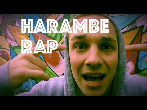Eminem Meets Harambe : Forgot About Harambe Rap