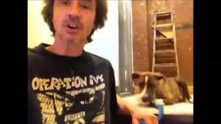 Dog Submissively Urinates When Excited.........peter Caine Dog Training