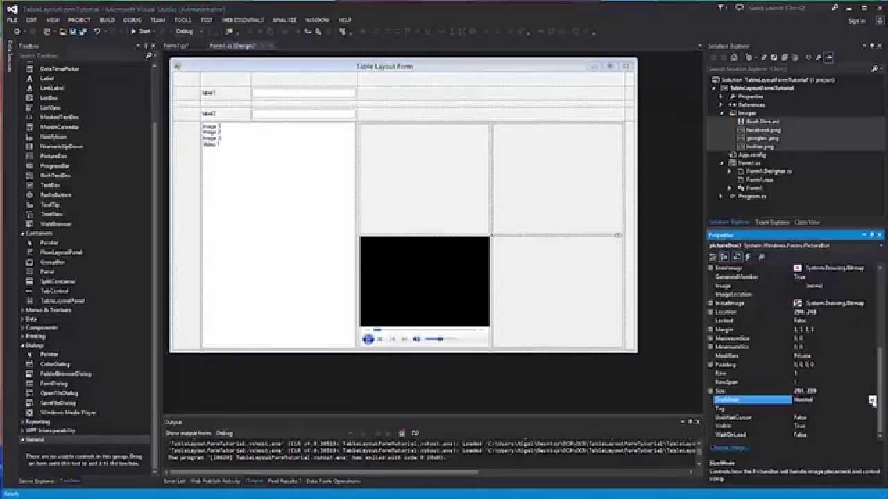 report viewer in c windows application tutorial