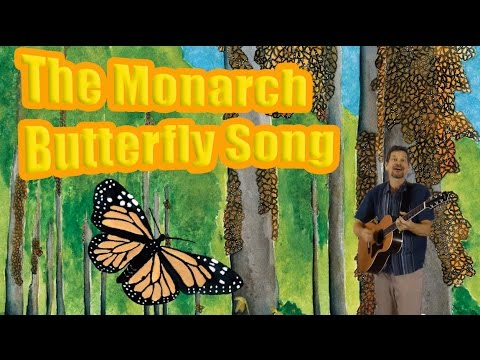 Monarch Butterfly Song: migration to Mexico & life cycle