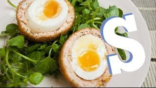 Salmon Scotch Eggs Recipe - Sorted