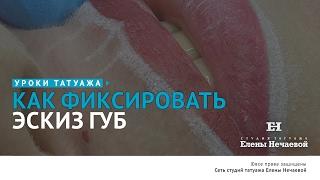 Как фиксировать эскиз губ #татуаж #татуажгуб #эскизтатуажагуб