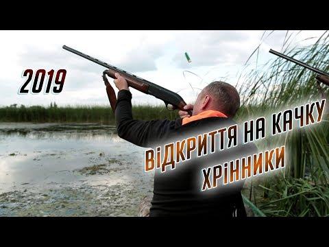 Відкриття на качку 2019 Хрінники. Открытия охоты на утку 2019