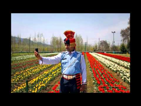 Srinagar in Bloom | Asia's Largest Tulip Garden Opens : TV5 News