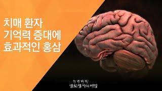 치매 환자 기억력 증대에 효과적인 홍삼 - (2011.…