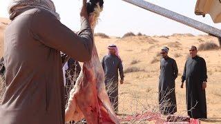 مكشات النشاما 2 |  تصوير وإخراج : عبدالرحمن الدحام