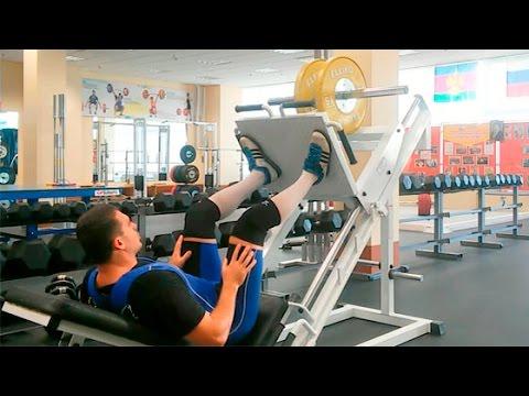 Жим ногами: техника и нюансы выполнения
