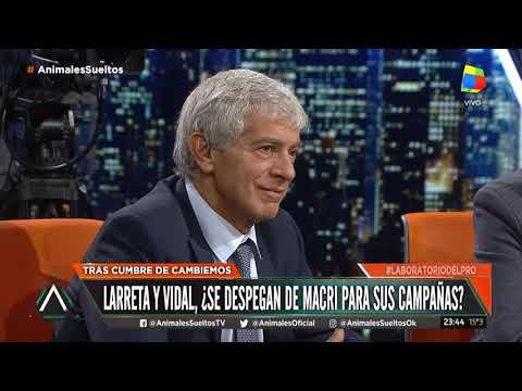 """Jorge Macri:  """"Va a ser un cabeza a cabeza entre Mauricio y Cristina, futuro contra pasado"""""""