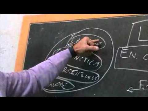 Teorema Lavoro ed Energia Cinetica - Matteo Fici