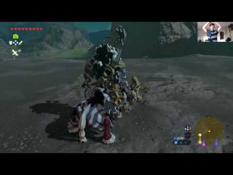 Ride'em Lynel. Link Vs White Lynel No Damage No Heals. Mount A Lynel For Max Penetration!