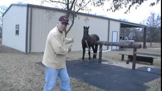 Video How Not To Get Kicked By A Horse - Why Horses Kick People - Stay Away From Back Hooves download MP3, 3GP, MP4, WEBM, AVI, FLV November 2018