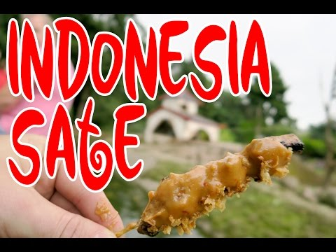 Indonesia Sate at ZOO (ZOOmer Food Festival) - DierenPark Amersfoort Netherlands