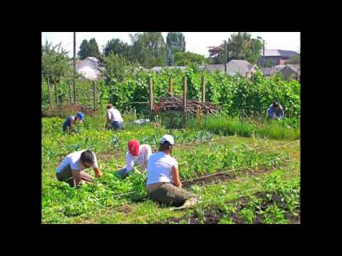 Economic Organizing in Rural Washington State