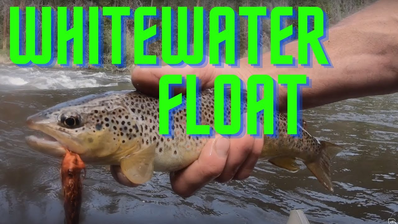 WHITEWATER FLY FISHING (float trip)