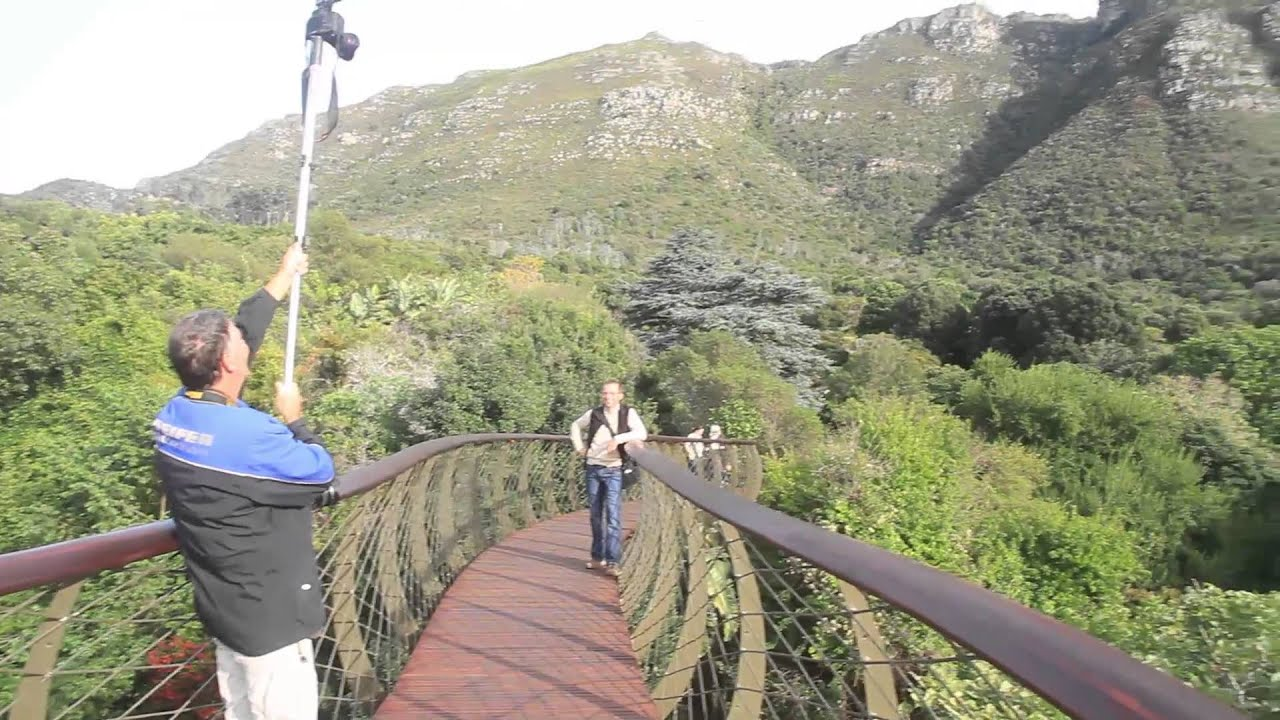 & Aerial walkway at Kirstenbosch gives new viewpoint - YouTube