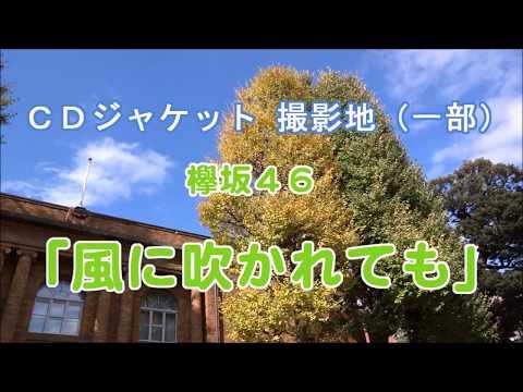 撮影地 CDジャケット 欅坂46「風に吹かれても」(一部)